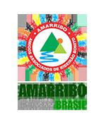 <p>Terceiro Setor – Amarribo Brasil faz carta-aberta sobre eleições para a presidência da Câmara<p>