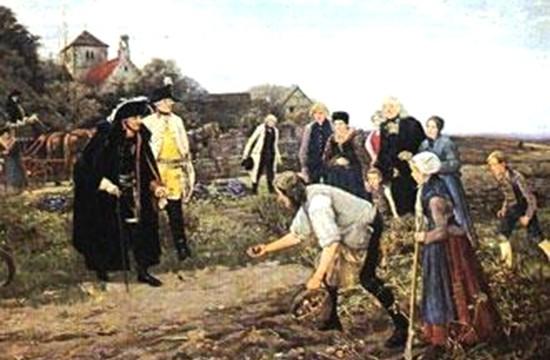 História – <p>Apresentação na internet conta a impressionante história de como a batata foi introduzida na Europa