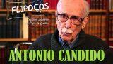 <p>Alta cultura brasileira –  Entrevista de Antônio Cândido, que faria 100 anos, dando uma aula sobre a cultura brasileira<p>