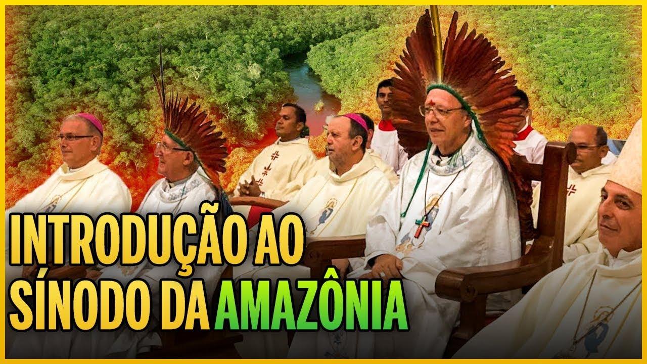 Religião – Sínodo da Amazônia, ou como a milenar Igreja Católica pode estar sendo barroquizada pela esquerda